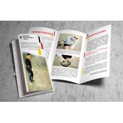 Faltblatt: Informationen zum Sondengehen 2016 V.2.0